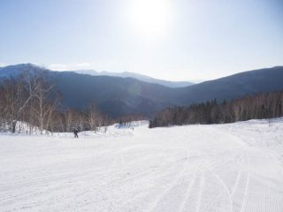 スキー歴1年